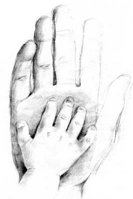 Pencil Sketch Delicate Touch Dr Robert Marselle