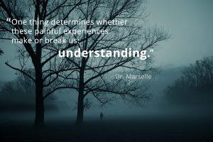 Telepsyonline Understanding
